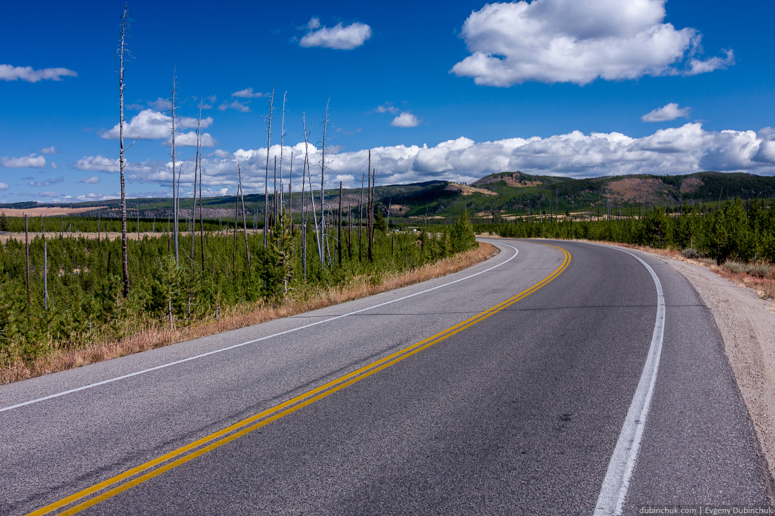 Дорога в Национальном парке Йеллоустоун, США. Одиночное путешествие на велосипеде по США. Road in Yellowstone National Park