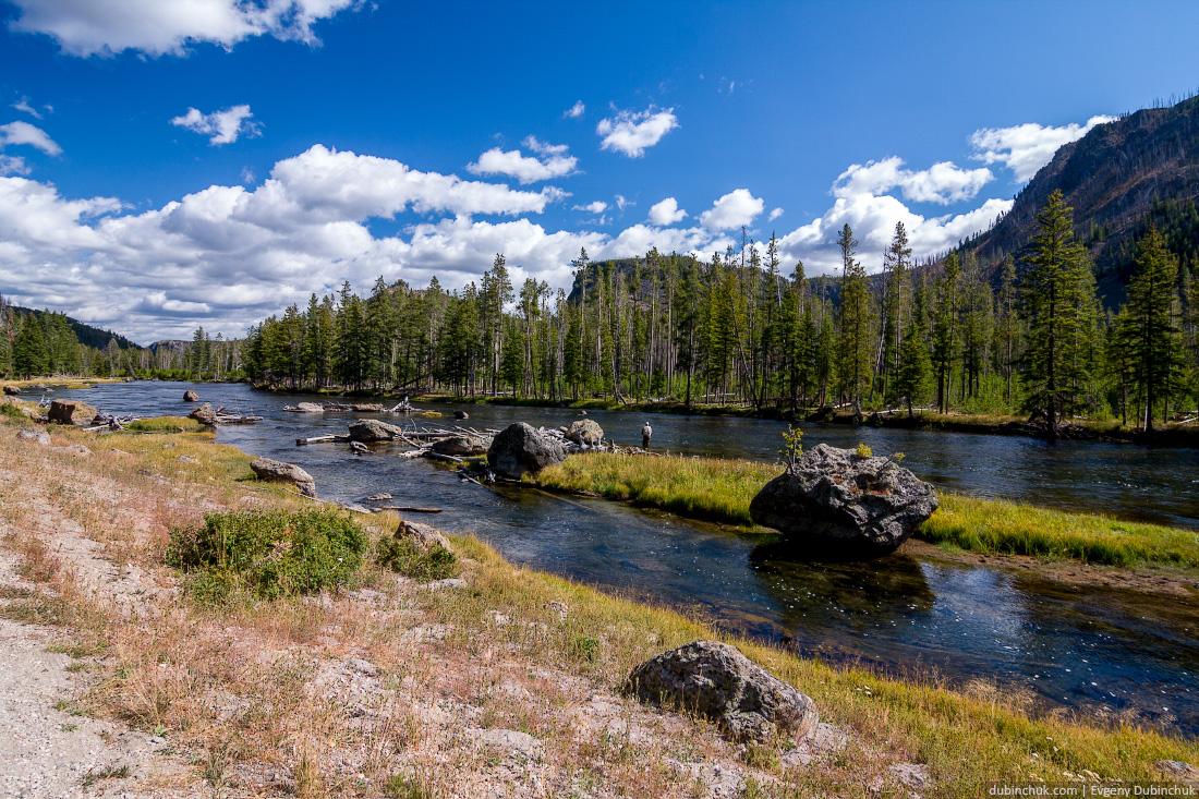 Река в Национальном парке Йеллоустоун, США. Одиночное путешествие на велосипеде по США. River in Yellowstone National Park