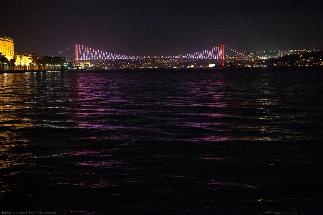 turkey_1192