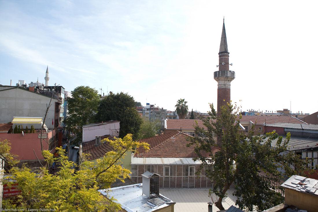 turkey_1198