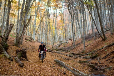Cyclist in Crimean forest in autumn