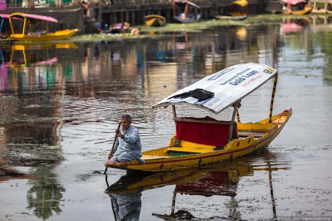 Таксист на озере Дал в Шринагаре