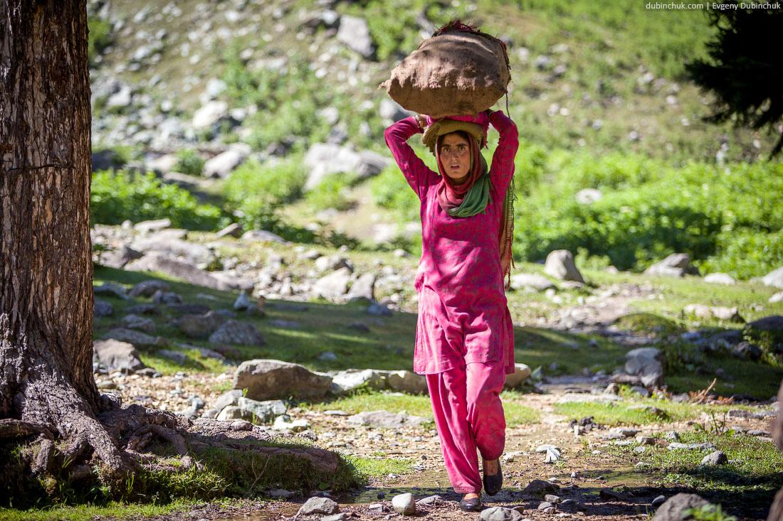 Кашмирки таскают тяжести
