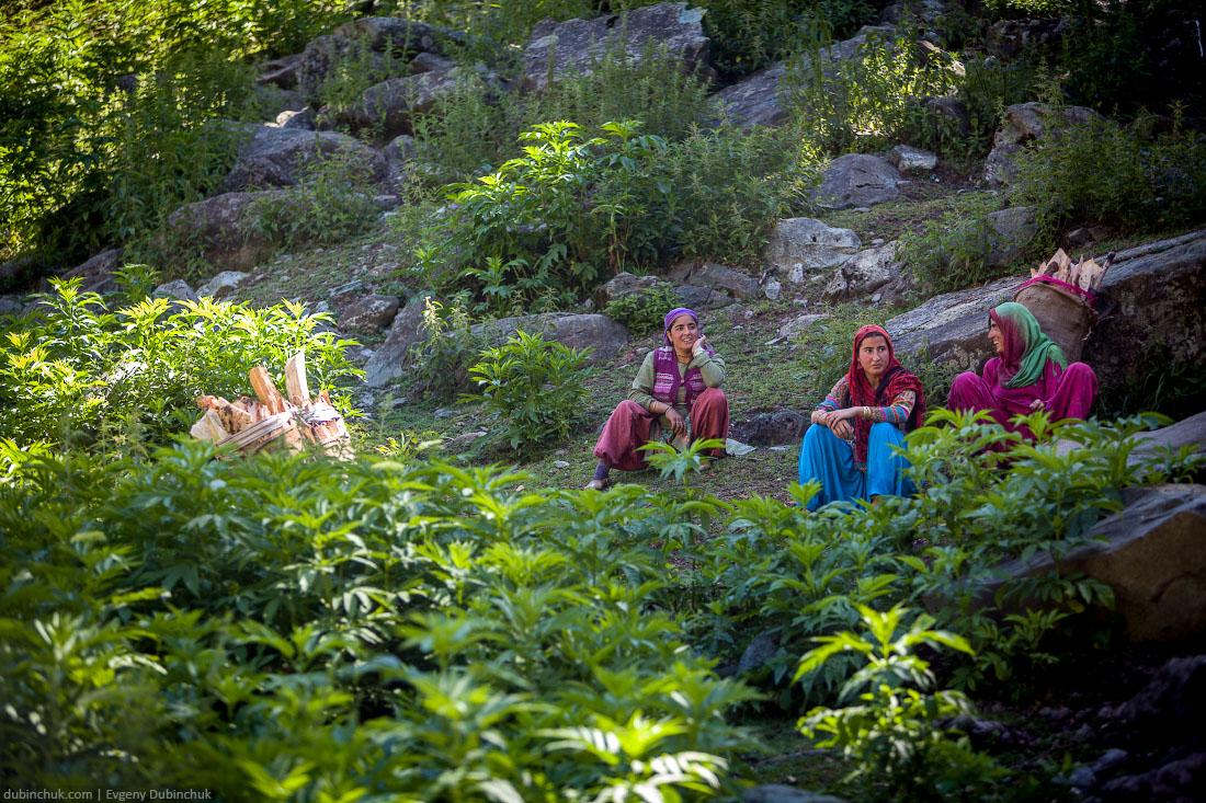 Тяжелый женский труд. Индия, Кашмир, Гималаи
