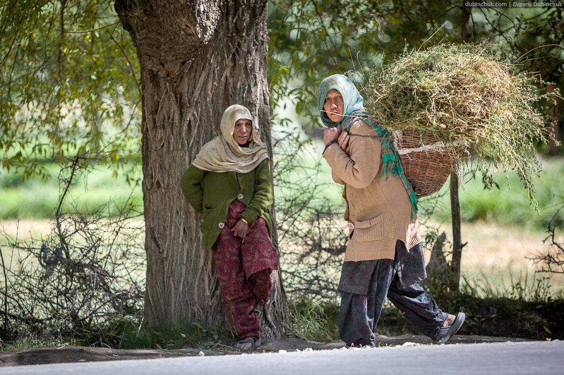 Кашмирская женщина тащит сено