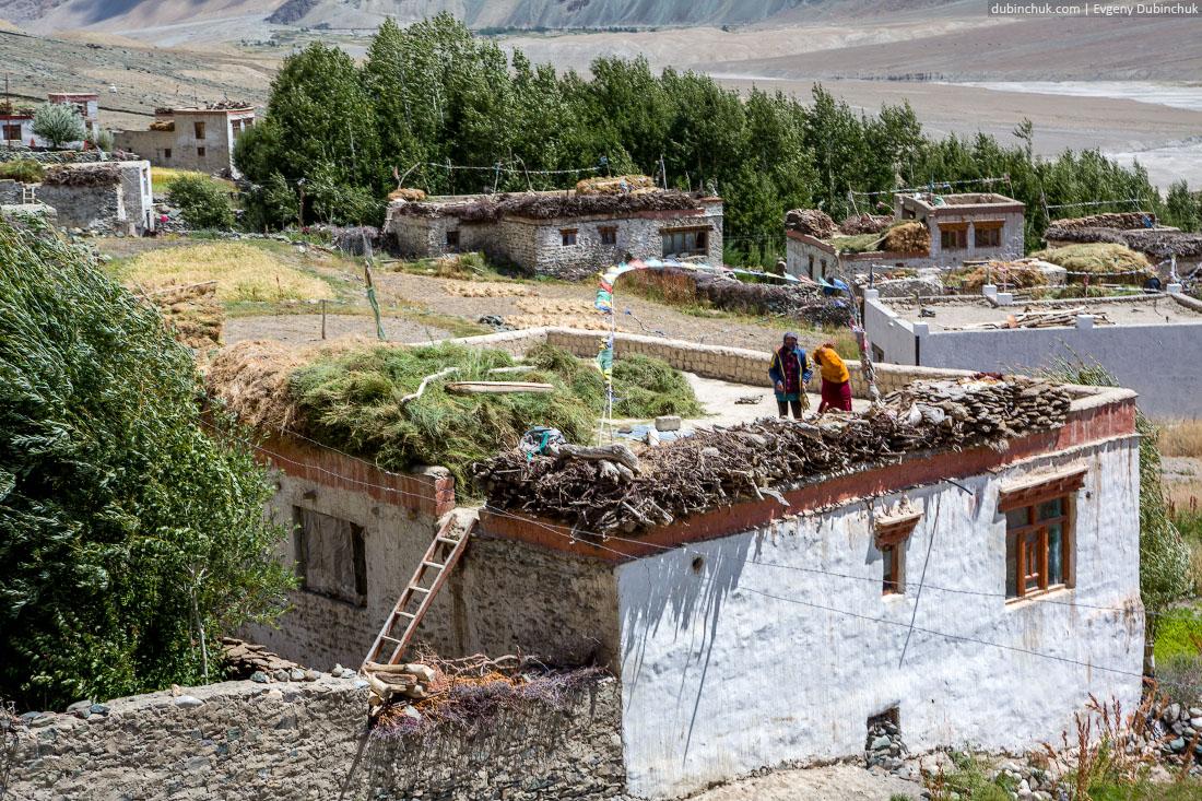 Сельское хозяйство в Занскаре