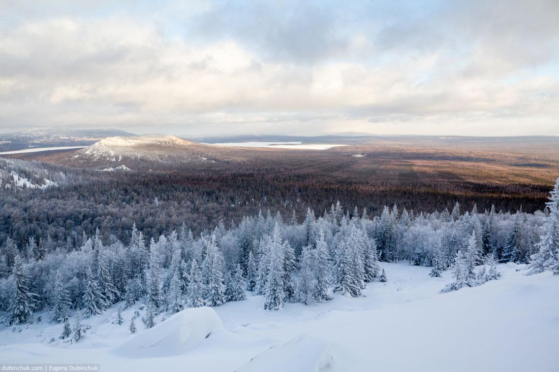 Лесопосадки в Зюраткуле зимой