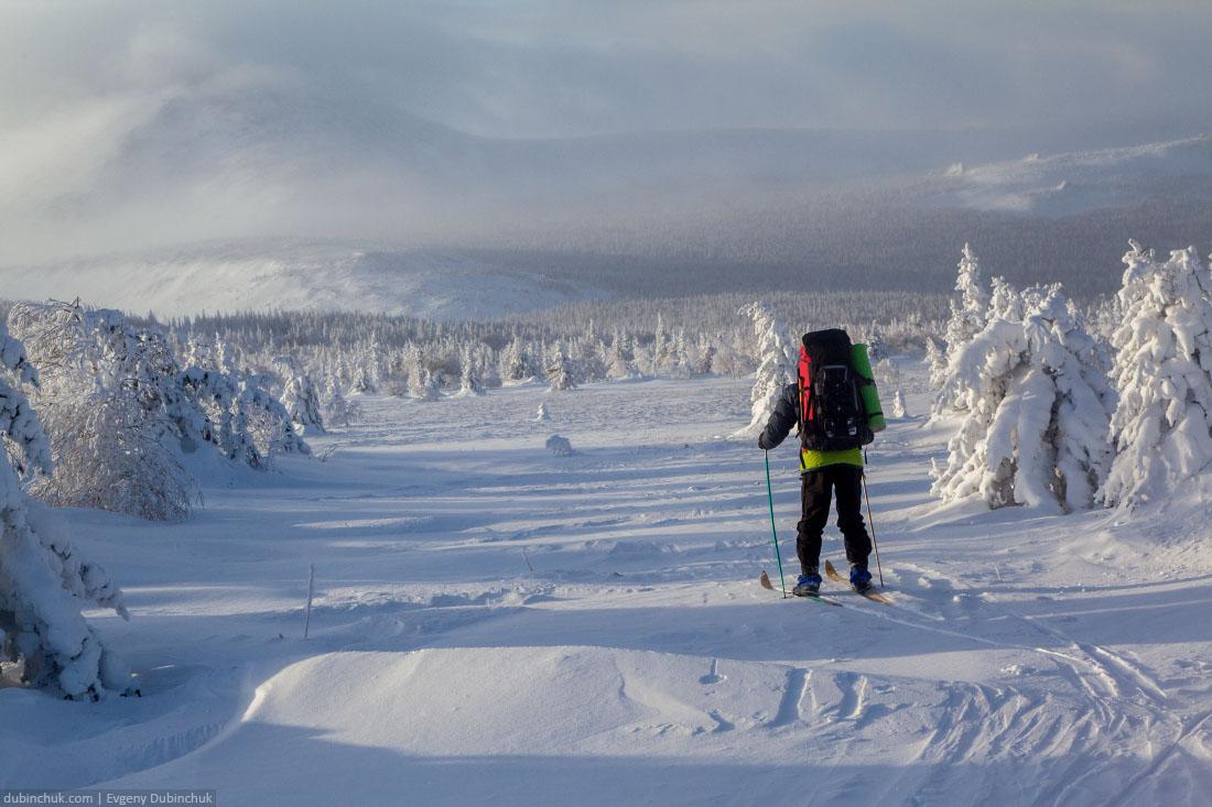 Между заснеженными елями на лыжах. Иремель, Южный Урал