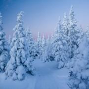 Лыжный поход по Южному Уралу. Большой и Малый Иремель. Январь 2015. Часть 2.