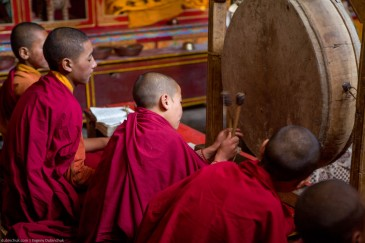 Praying young monks. Lamayuru monastery