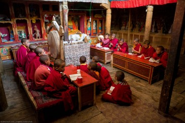 Young monks from Lamayuru Gompa praying
