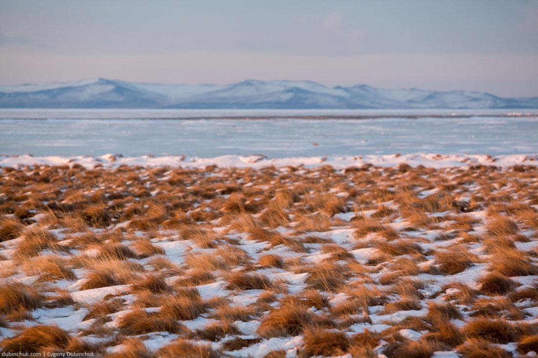 Берег Байкала зимой. Lakeshore of Baikal in winter