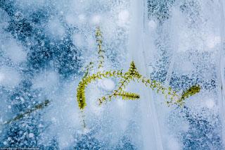 Вмерзшие в лед. Зимний Байкал. Часть 6