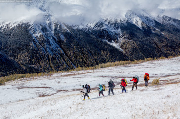 Group of hikers in Altai mountains going on snow