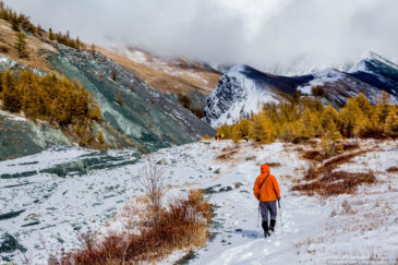 Hikers in Altai mountains in late autumn