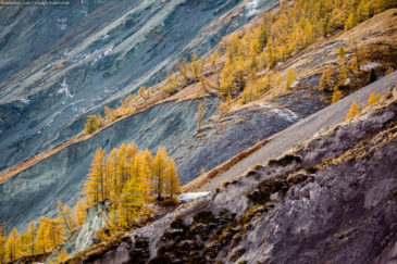 Multicolored Altai mountains in autumn