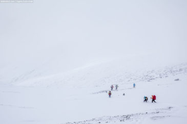 Group of hikers going on snowy mountains