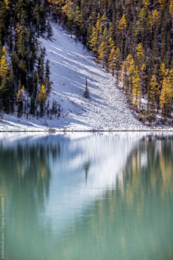 Reflections on the lake. Altai
