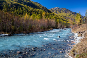 Kucherla river in Altai